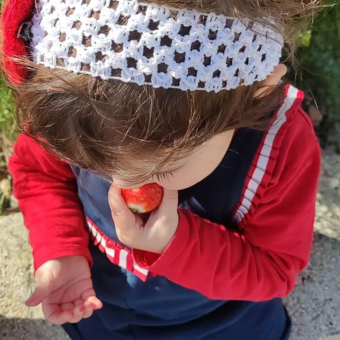 BLW y Alimentación infantil - Nutripeques