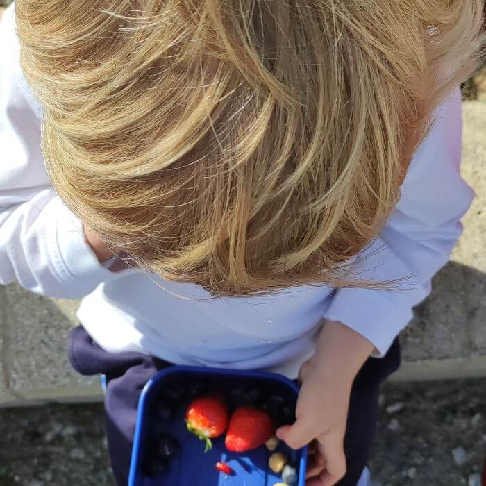Nutricionista infantil especializada en BLW
